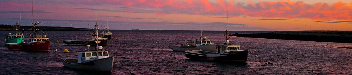 Abbotts-Harbour.jpg