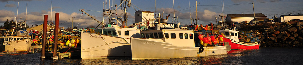 Hummer-Boote.jpg